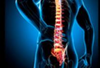 Поясничный отдел l5 l4 S1 укрепление и профилактика болей, остеохондроза, протрузий и грыж.